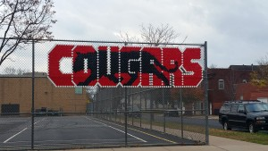 cougar fence