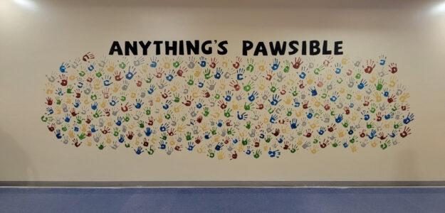 pawsible